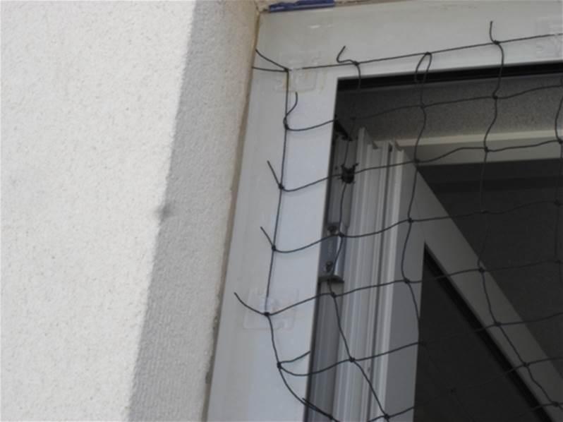 filet anti pigeons 5x5m couleur noire avec accessoires de fixation fixnet. Black Bedroom Furniture Sets. Home Design Ideas